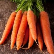 Каротан семена моркови Флакке  (Rijk Zwaan) поздний сорт