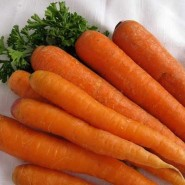 Наполи F1 семена моркови  (1,8-2,0 мм) PR (Bejo)