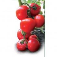 Ядвига F1 семена томата ультрараннего