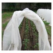 Агроволокно белое, плотность 23 г/м2, длина 200м