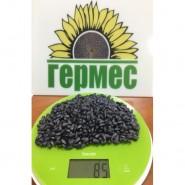 семена подсолнечника Антей   (фракция Эконом калибр 2,6 мм)